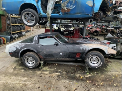 Chevrolet Corvette C3 Door Shell - Corvette Stingray Door Shell - Stingray Door RH - 1980